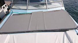 Panneau solaire renogy